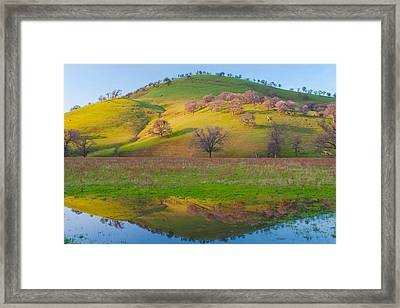 Hill Reflection In Pond Framed Print by Marc Crumpler