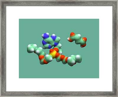 Hiv Drug Molecule Framed Print by Dr Tim Evans