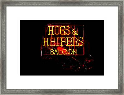 Hogs And Heifers Framed Print by Bobby Deal