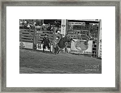 Hold On For 8 Framed Print by Shawn Naranjo