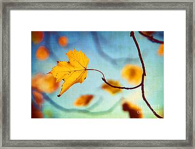 Holding On Framed Print by Darren Fisher