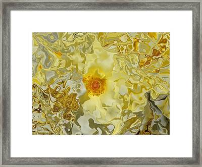 Homage To The Sun  Framed Print by Daniele Smith