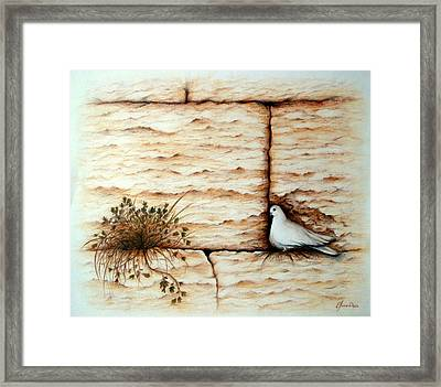 Home To All Framed Print by Lena Day