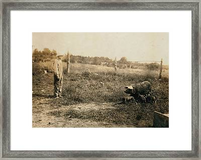 Homer Hunt Tending Pigs, Rockcastle Framed Print by Everett