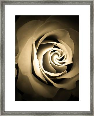 Hommage To O'keeffe Framed Print by Beth Akerman