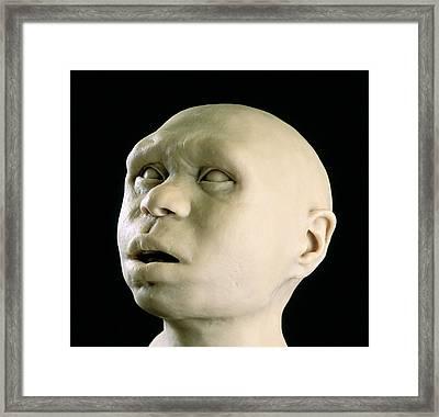 Homo Antecessor Reconstruction Framed Print by Javier Truebamsf
