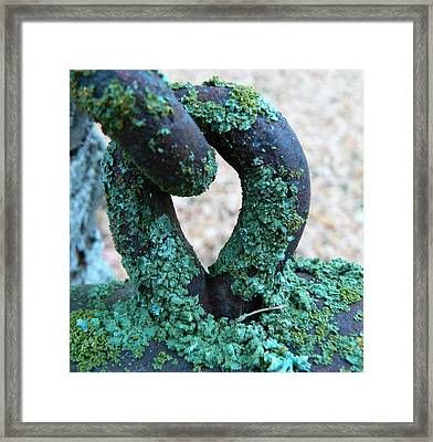 Hooked On Rust Framed Print by Barbara St Jean