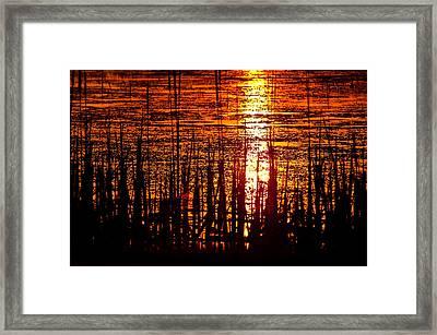 Horicon Marsh Sunset Wisconsin Framed Print by Steve Gadomski