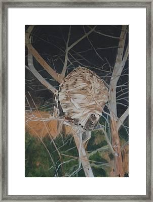 Hornet's Nest Framed Print by Terry Forrest