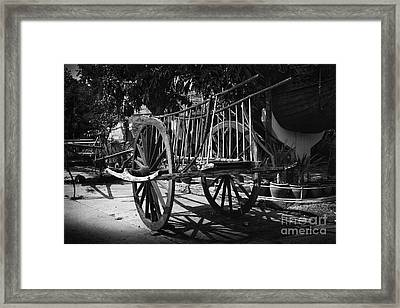 Horse Cart Framed Print by Thanh Tran