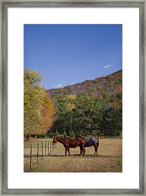 Horses And Autumn Landscape Framed Print by Kathy Clark
