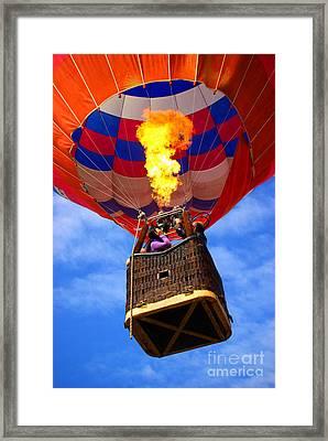 Hot Air Balloon Framed Print by Carlos Caetano