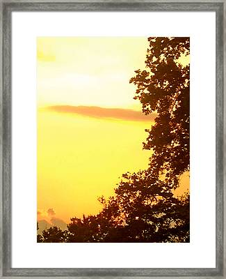 Hot Ashes For Trees Framed Print by Christine Segalas
