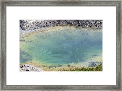 Hot Spot Framed Print by Living Color Photography Lorraine Lynch