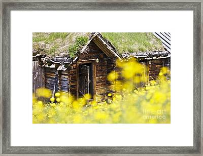 House Behind Yellow Flowers Framed Print by Heiko Koehrer-Wagner