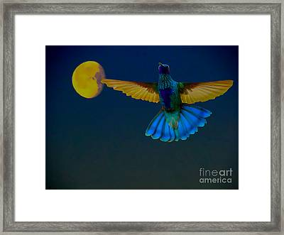 Hummingbird Moon Framed Print by Al Bourassa