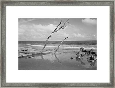 Hunting Island State Park Framed Print by Donnie Smith