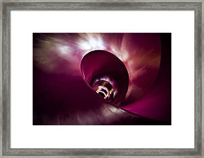 Hypnosis Framed Print by Peter Benkmann