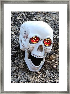 I Only Have Eyes For You Framed Print by Debra     Vatalaro