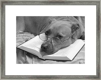 I Read My Bible Every Day . Bw Framed Print by Renee Trenholm