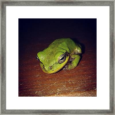 I See You Framed Print by Chasity Johnson