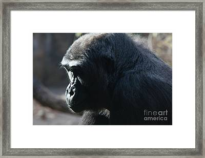 I Think Therfore I Am Framed Print by Keith Kapple