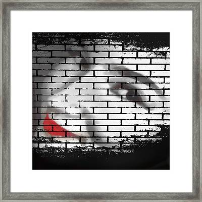 I Would Never Hurt A Fly Framed Print by Angelina Vick