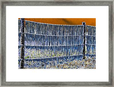 Ice Storm Framed Print by David Lee Thompson