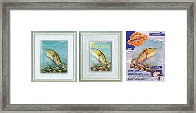Ice Walleye Framed Print by JQ Licensing