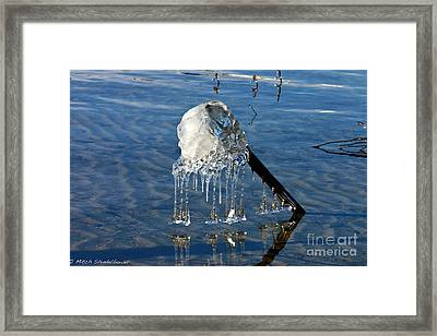 Icy Fence Post Framed Print by Mitch Shindelbower