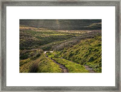 Icy Track Framed Print by Clare Bambers