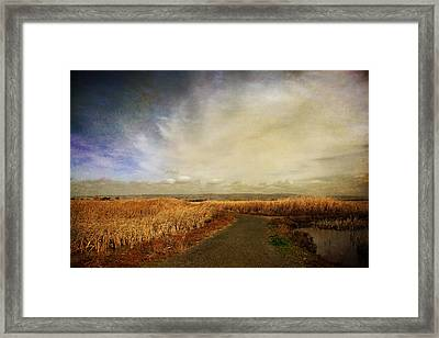 If I Could See Into The Future Framed Print by Laurie Search