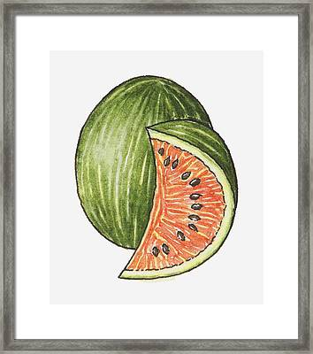 Illustration Of A Slice Of Watermelon And A Whole Watermelon Framed Print by Dorling Kindersley