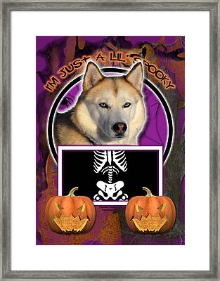 I'm Just A Lil' Spooky Siberian Husky Framed Print by Renae Laughner