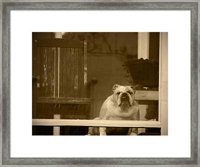I'm Waiting For You Framed Print by Kym Backland