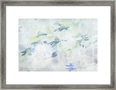 Imagine Framed Print by Aimelle