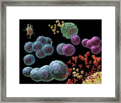 Immune Response Antibody 2 Framed Print by Russell Kightley