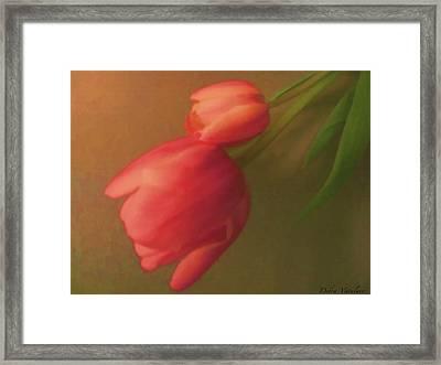Impact Of Spring Framed Print by Debra     Vatalaro