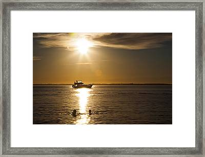 In And Out Framed Print by Monte Arnold