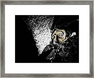 In Harmony Framed Print by Jessica Brawley
