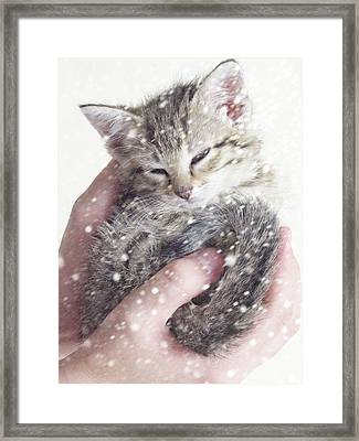 In Safe Hands II Framed Print by Amy Tyler