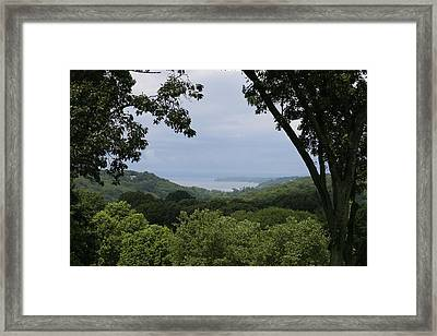 In The Jungle  Framed Print by Paul SEQUENCE Ferguson             sequence dot net