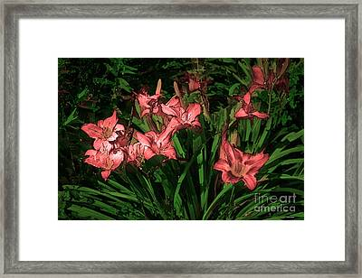In The Pink Framed Print by Tom Prendergast