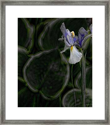 In The Silence Framed Print by Bonnie Bruno