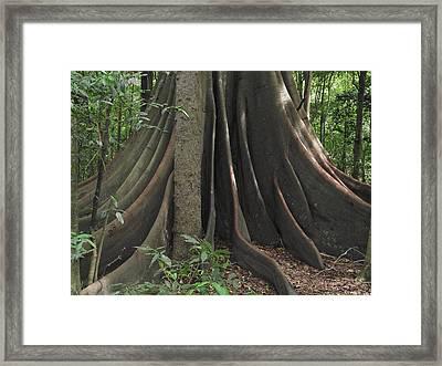 In Time Framed Print by Rani De Leeuw
