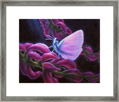 Inapertwa Simple Creatures Framed Print by Shawn Kawa