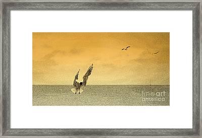 Incoming Framed Print by Linsey Williams