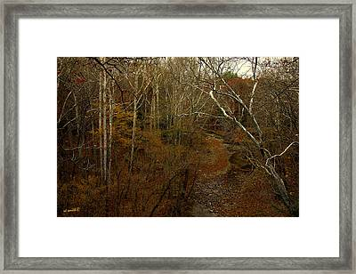 Indian Creek Framed Print by Ed Smith