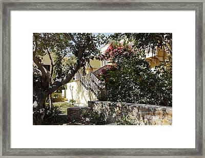 Indian Summer Garden Framed Print by Kantilal Patel
