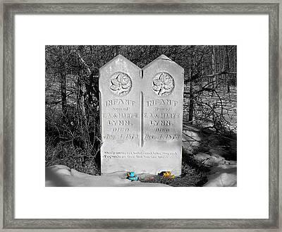 Infant Framed Print by Steven  Michael
